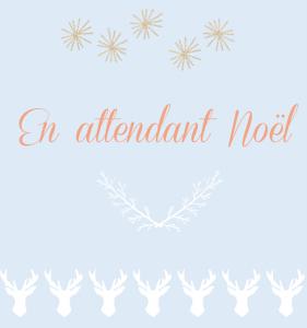illustration_offre-speciale_noel2016_bleudore-le-blog